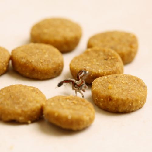 Spider Saute
