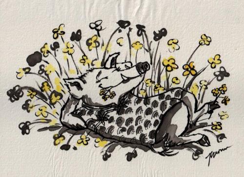 Spring Boar